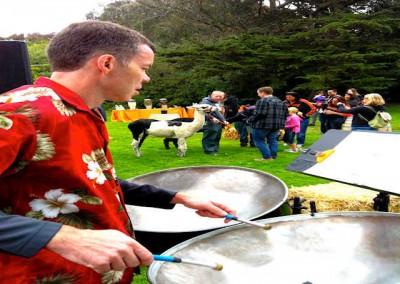 Steel Jam Performing at Stub Hub Company Picnic at the San Francisco Zoo